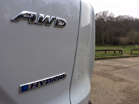 Rear badge view